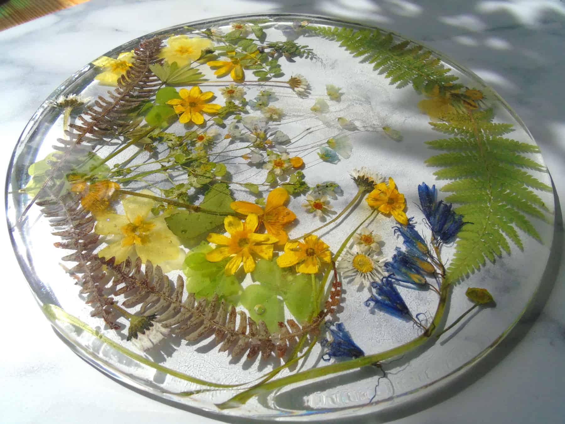 Wildflowers of Mull resin coaster