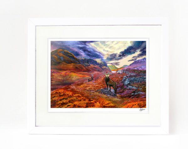 Glencoe stag framed print